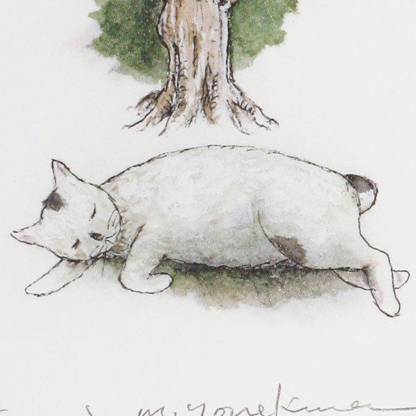 画像5: 昼寝猫