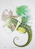 画像1: 海人族の戦士 (1)